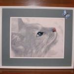 вышивка крестом кошек